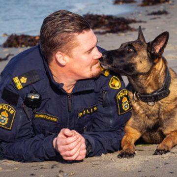 Bella, 5, årets polishund