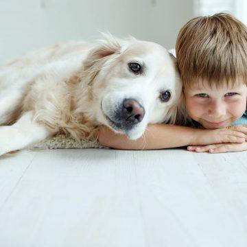 Historisk dag för Sveriges Hundungdom