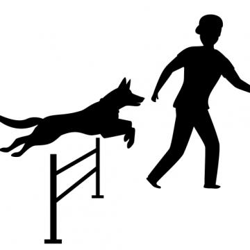 Ny samlingsplats för hundar i Sövestad