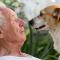 Ta hand om din pensionär