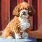 Sex hundar blir frimärken