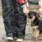 Burträsk hundklubb får nytt liv