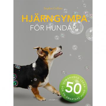 Boktips! Hjärngympa för hundar