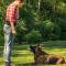 Ny hundträningsgård på Herrfallet