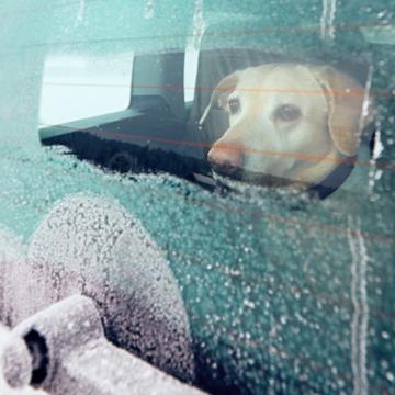 Se upp för kalla bilar