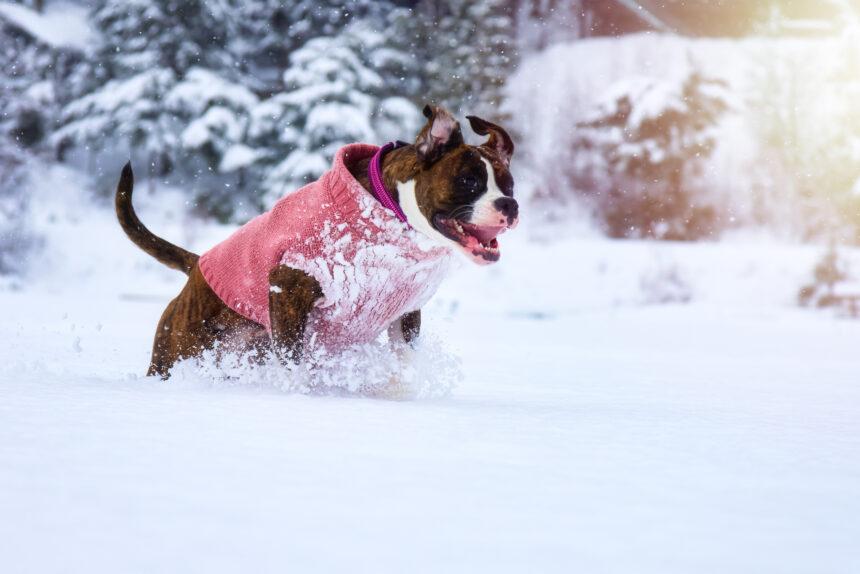 Undvik köldkramp i kylan