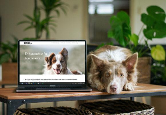Nordic Dog Days blir digitala föreläsningar