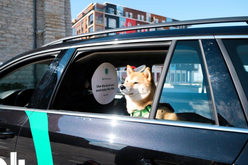 Lättare att boka taxi med hund