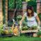 Så hundsäkrar du trädgården
