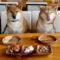 Västsverige satsar på hundturism
