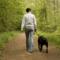 Hundpromenad för hjärtats skull
