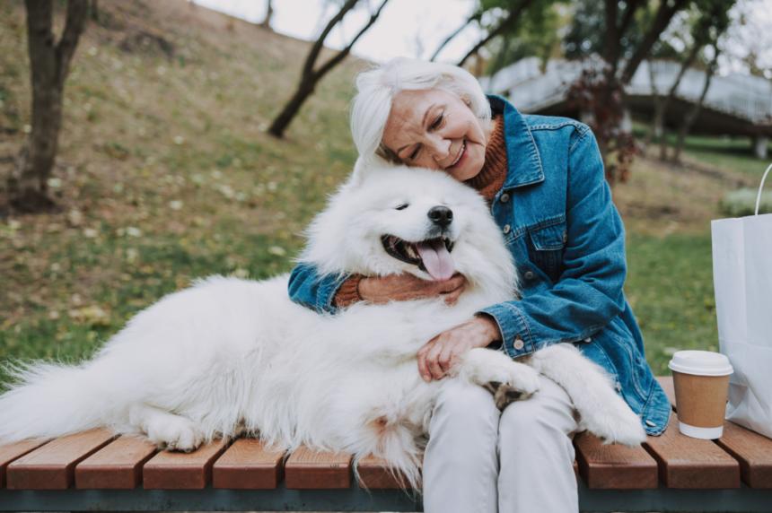 Seniorer + hundar = sant