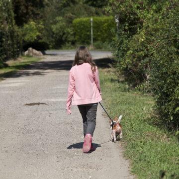 Stötta Cancerfonden – gå en Rosa husdjurspromenad